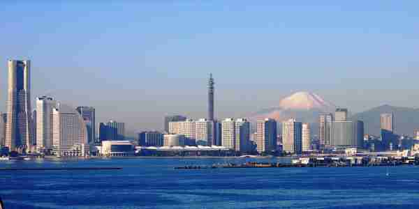 日本全国の古物市場の情報が集まる!